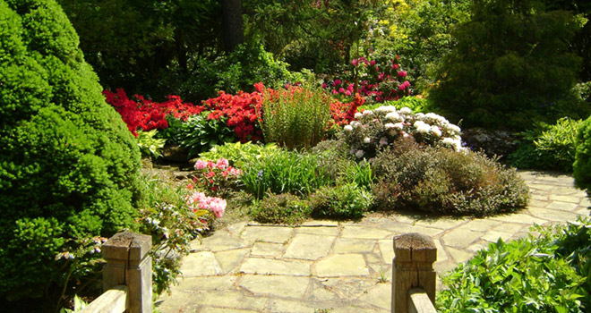 Garden design services from FT Gearing