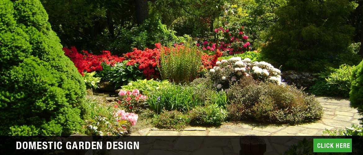 Domestic garden design