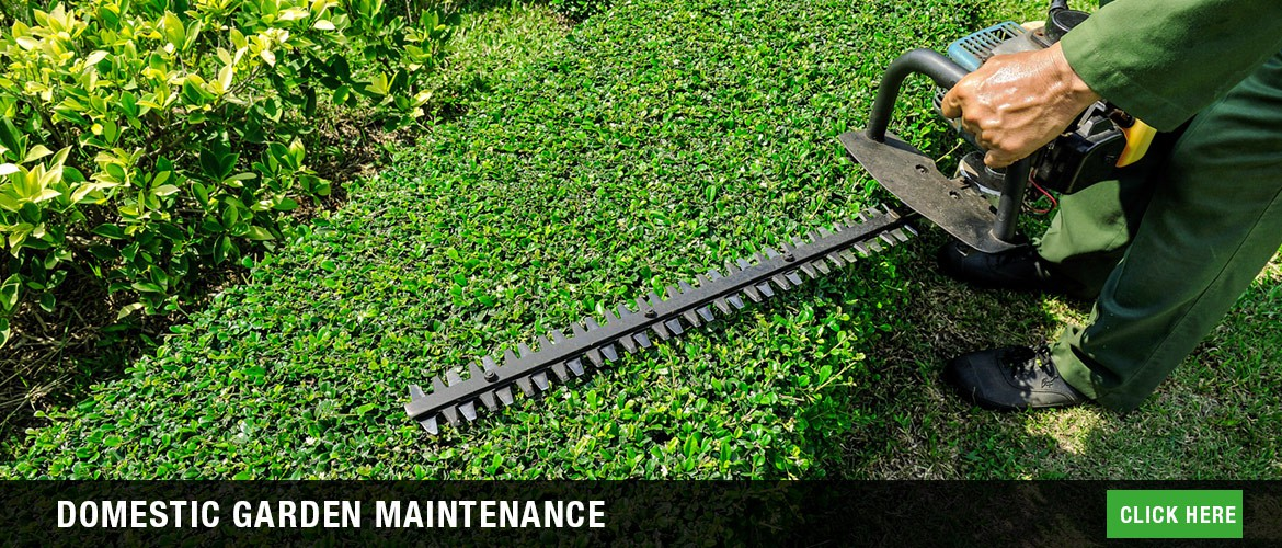 Domestic garden maintenance